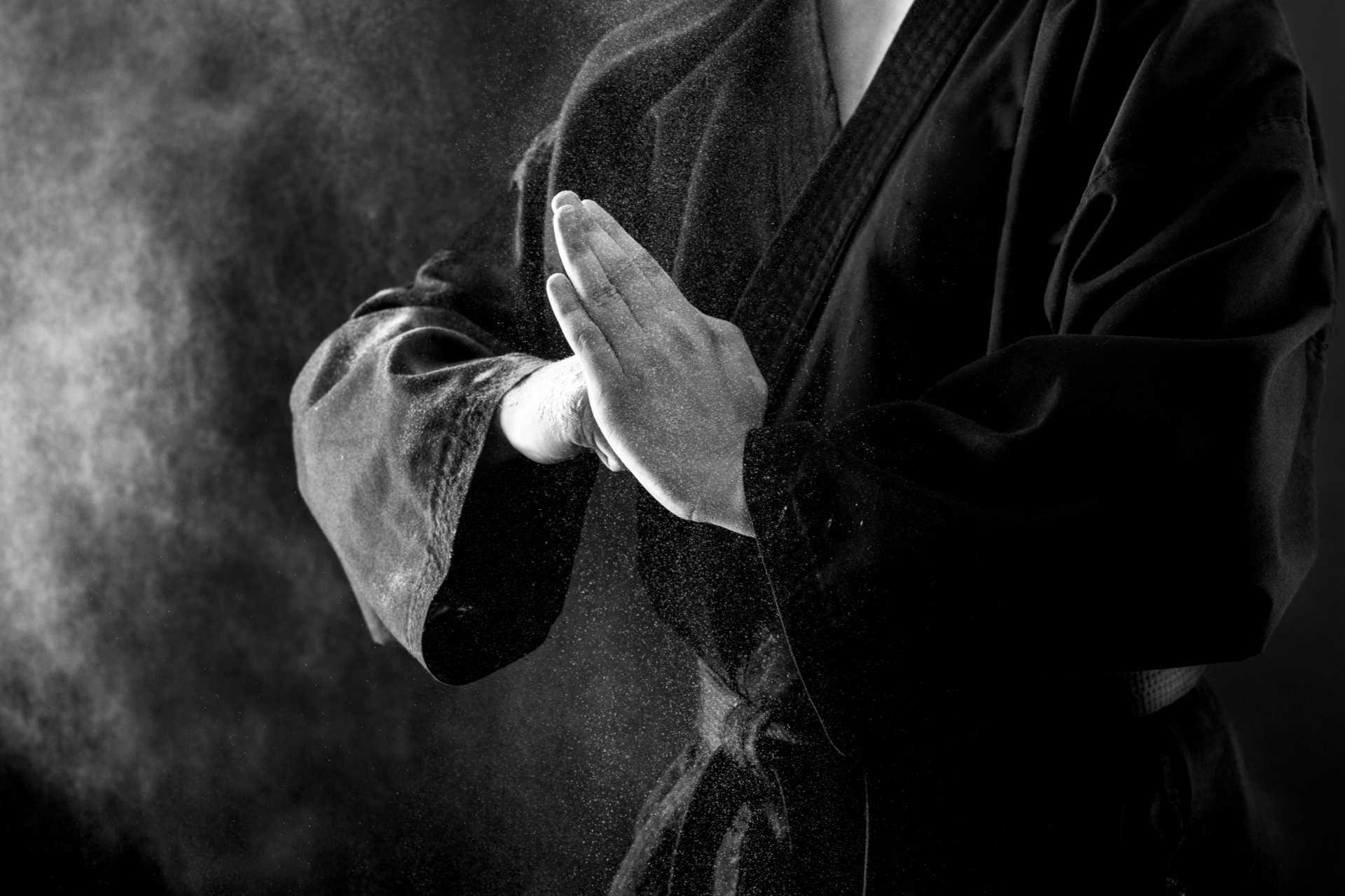 Budō, la via marziale