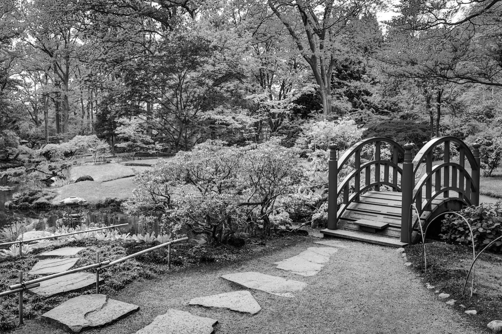 Nihon teien, il giardino giapponese