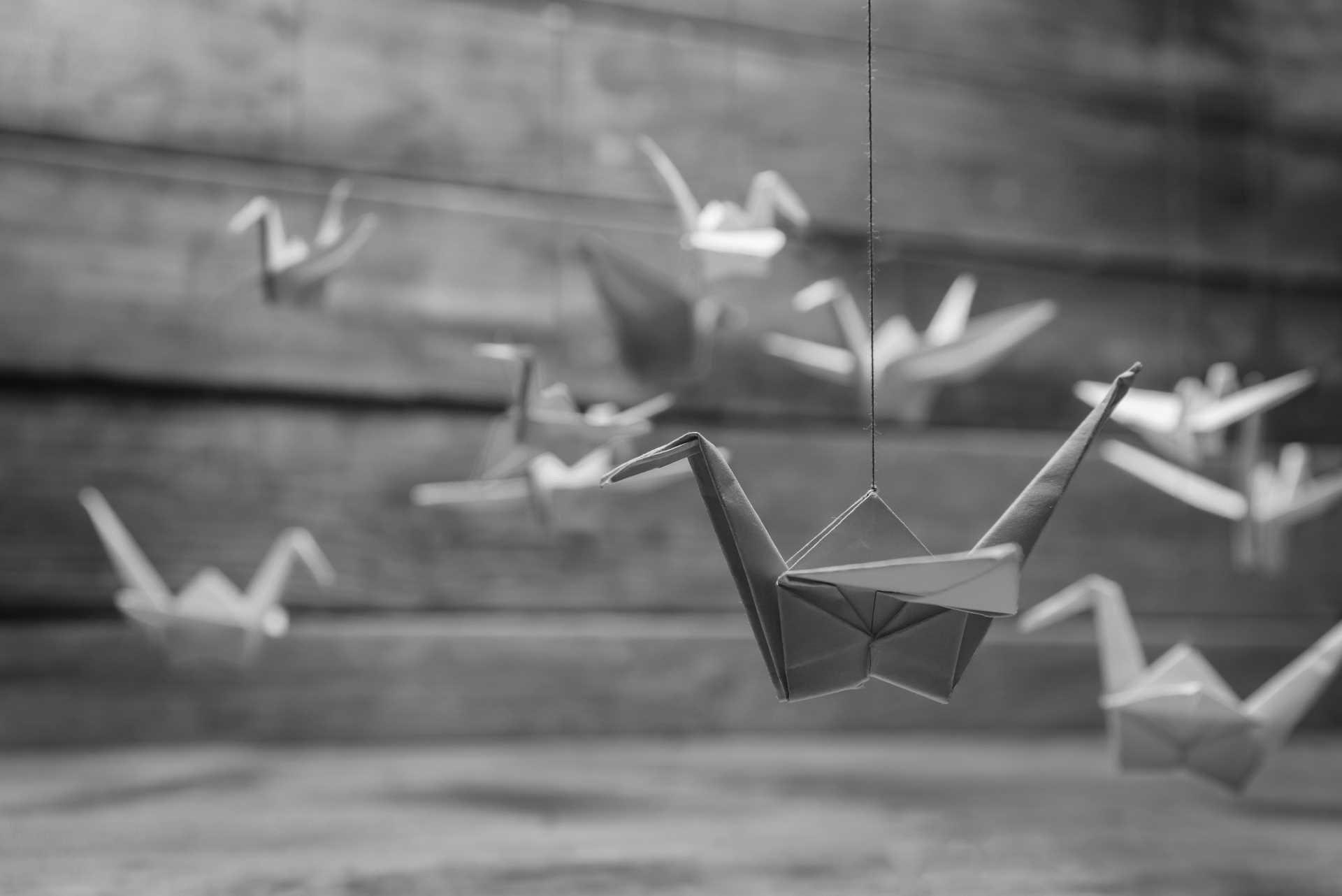 Origami, arte giapponese di piegare la carta