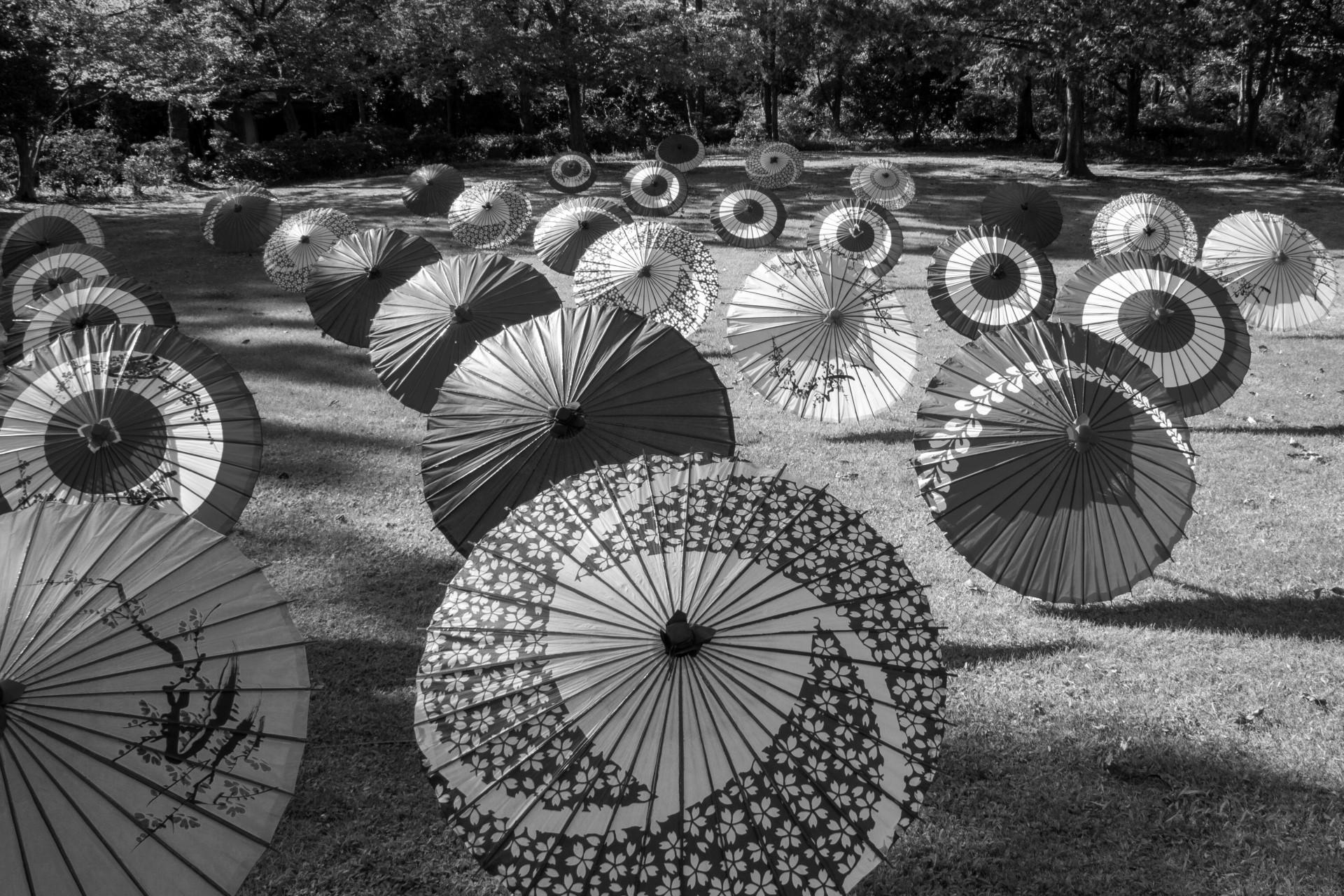 Wagasa, ombrello artigianale giapponese